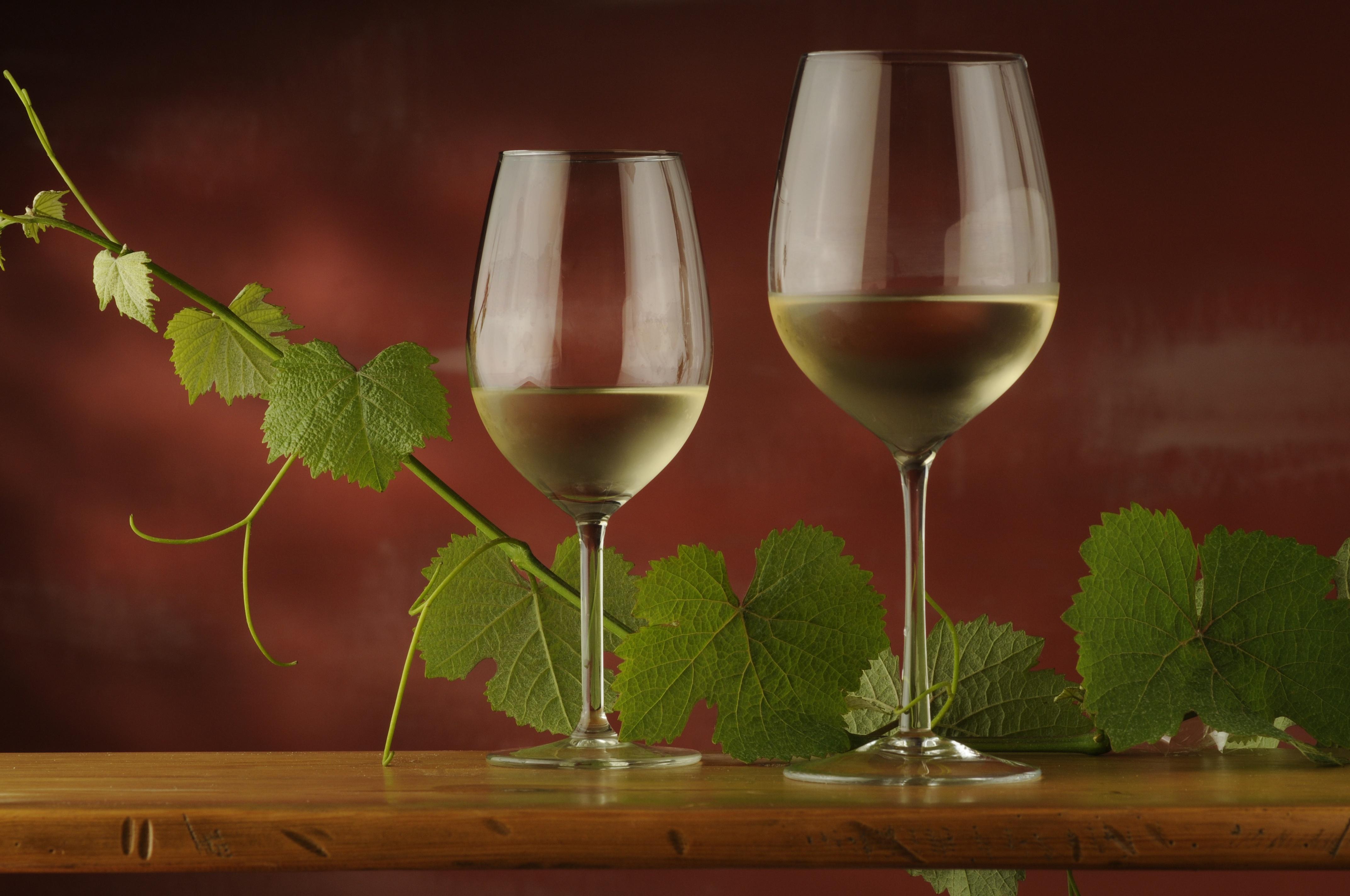 Pinot Grigio vs Pinot Gris