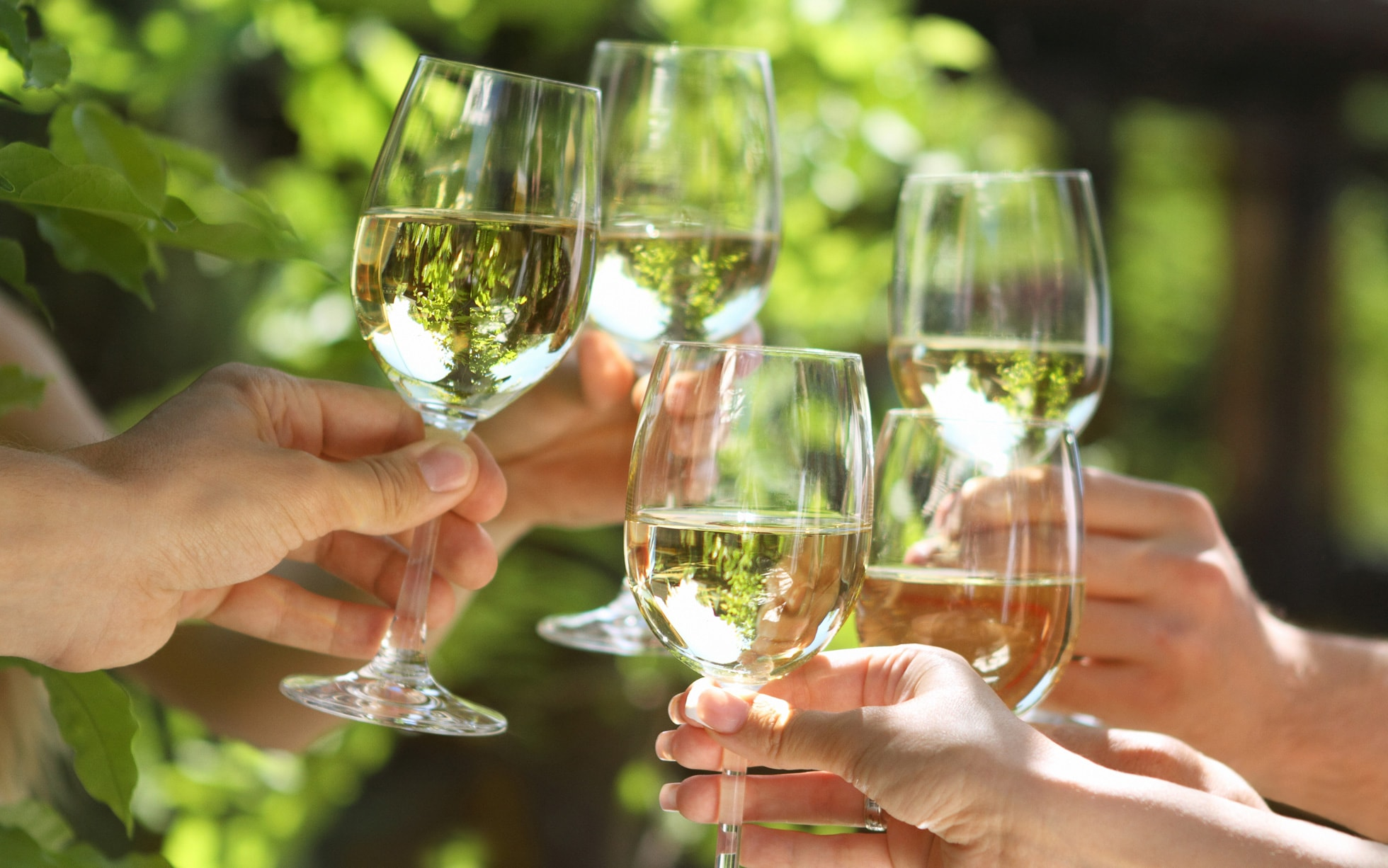 white-wine-glasses-cheers-outdoors